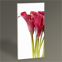 Tablo 360 Beautiful Flowers Tablo 60X30