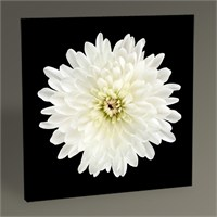 Tablo 360 White Flower Tablo 30X30