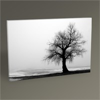 Tablo 360 Tree İn Fog Tablo 45X30