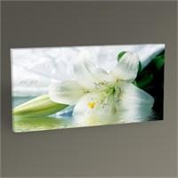 Tablo 360 Beyaz Lily Tablo 60X30