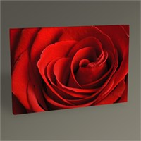Tablo 360 Red Rose Iı Tablo 45X30