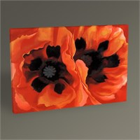 Tablo 360 Georgia O'keeffe Oriental Poppies Tablo 45X30