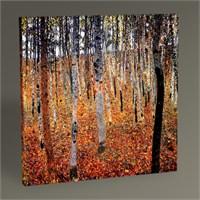 Tablo 360 Gustav Klimt Kayın Ağacı Ormanı Tablo 30X30