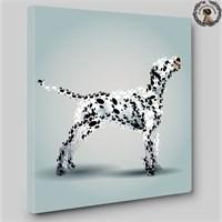 Artred Gallery 50X70 Dalmaçyalı Işıklı Tablo