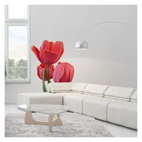 Artikel Tulip Dev Duvar Sticker Dp-1453