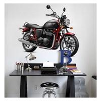 Artikel Motorcycle-1 Dev Duvar Sticker Dp-1464