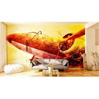 Iwall Resimli Eski Uçak Duvar Kağıdı 250X180