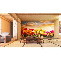 Iwall Resimli Laleler Duvar Kağıdı 180X130