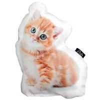 Gibidesing Garfy Yavru Kedi Yastık