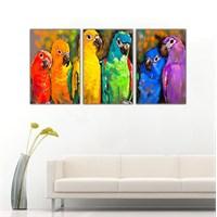 Ritmo Canvas Renkli Papağanlar Kanvas Tablo