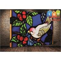 Tablo İstanbul Kuş Yağlıboya Led Işıklı Kanvas Tablo 45 X 65 Cm