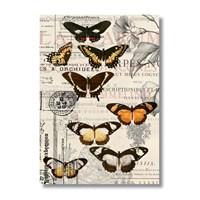 Ritmo-Renkli Kelebekler Kanvas Tablo