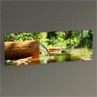 Tablo 360 Suyun Akışı Tablo 60X20