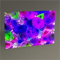 Tablo 360 Dekoratif Çiçekler Iı Tablo 45X30