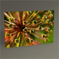 Tablo 360 Plant Flower Tablo 45X30