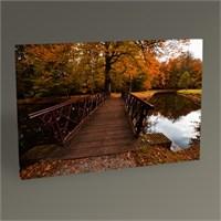 Tablo 360 Ormanda Sonbahar Renkleri 45X30