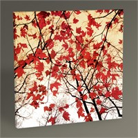 Tablo 360 Bare Branches And Red Maple Leaves 30X30