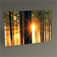 Tablo 360 Forest Sunbeams Iıı Tablo 45X30