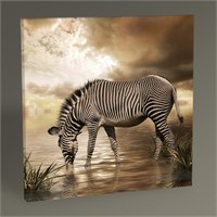 Tablo 360 Zebra Tablo 30X30