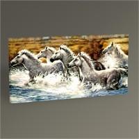 Tablo 360 Beyaz Atlar Tablo 60X30