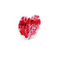 Aydindecor Kalpli Plastik Acılır Kapılır Masa Aynası