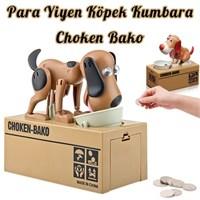 Hardymix Para Yiyen Köpek Kumbara Choken Bako