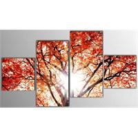Tictac 4 Parça Kanvas Tablo - Kırmızı Yapraklı Ağaç