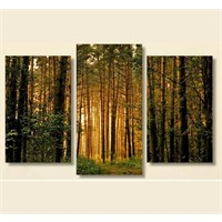 Tictac 3 Parça Kanvas Tablo - Ağaçlar