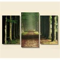 Tictac 3 Parça Kanvas Tablo - Orman Ve Yol