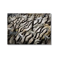 Tictac Maymunlar Kanvas Tablo - 40X60 Cm