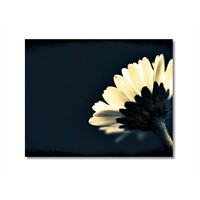 Tictac Beyaz Çiçek Kanvas Tablo - 50X75 Cm