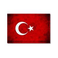 Tictac Türk Bayrağı Kanvas Tablo - 50X75 Cm