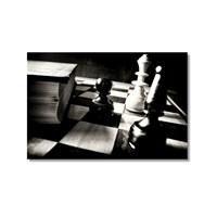 Tictac Satranç Taşları 2 Kanvas Tablo - 50X75 Cm