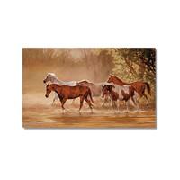 Tictac Özgür Atlar Kanvas Tablo - 50X75 Cm