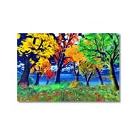 Tictac Renkli Ağaçlar Kanvas Tablo - 60X90 Cm