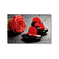 Tictac Kırmızı Yapraklar Kanvas Tablo - 50X75 Cm