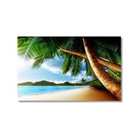 Tictac Sahildeki Ağaçlar Kanvas Tablo - 40X60 Cm