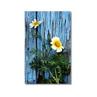 Tictac Çiçekler Kanvas Tablo - 40X60 Cm