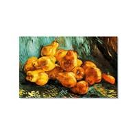 Tictac Van Gogh Armutlar Kanvas Tablo - 50X75 Cm