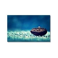 Tictac Taş Ve Damlalar Kanvas Tablo - 50X75 Cm
