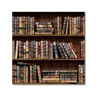 Tictac Kitaplık Kanvas Tablo - 60X60 Cm