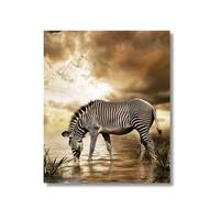Tictac Zebra Kanvas Tablo - 60X60 Cm