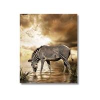 Tictac Zebra Kanvas Tablo - 50X50 Cm