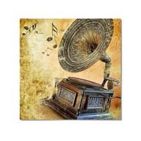 Tictac Gramafon Kanvas Tablo - 60X60 Cm