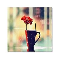 Tictac Vazodaki Çiçek Kanvas Tablo - 70X70 Cm