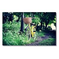 Tictac Sarı Bisiklet Kanvas Tablo - 60X120 Cm