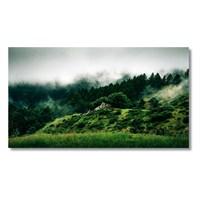 Tictac Orman Kanvas Tablo - 60X120 Cm