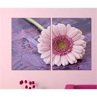 Tabloshop - Pink Daisy 2 Parçalı Canvas Tablo Saat - 63X40cm