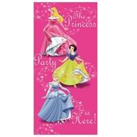 Parti Şöleni Prensesler Kapı Afişi 1 Adet