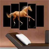 Canvastablom B98 Horse Parçalı Kanvas Tablo